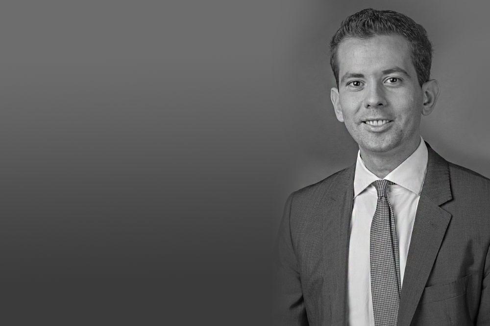 Antwort Dr. Martin Pätzold (MdB/CDU) - Gesetzesabschaffendes Referendum